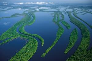 Бразилия Амазонка
